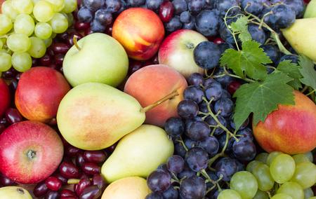 Fresh organic fruits - seasonal fruits