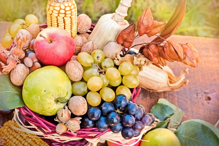 Seasonal fruit, autumnal fruit is delicious and healthy food