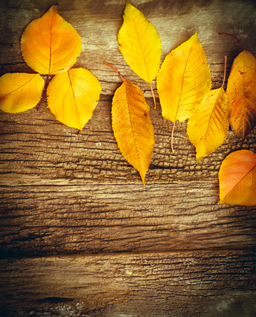 Yeallow leaves on rustic wooden background - autumn decoration