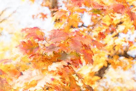 Illustration - autumn leaves, foliage on treetop
