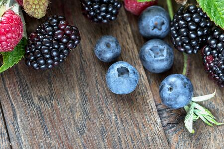 Delicious and healthy forest berries - forest fruits