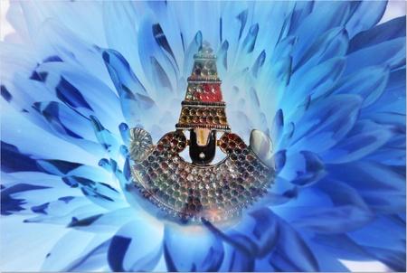 blau: balagi in blau flower background