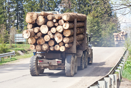Timber transport cerry logs on the mountain road photo
