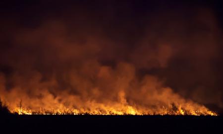 Night fire in a field.