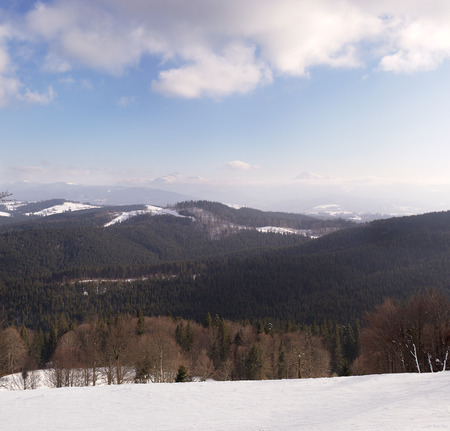 vertices: Panoramic views of the snow-capped Carpathian Mountains. Ukraine