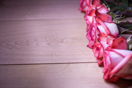 abreast: Pink roses on a wooden background on the right side.