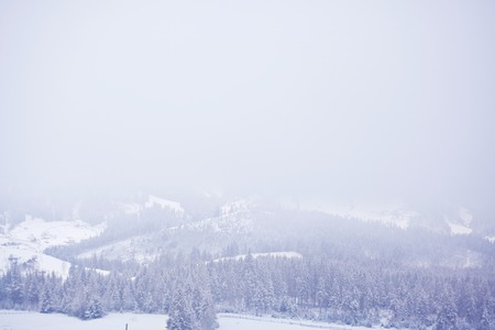 vertices: Snow-covered Carpathian mountains foggy winter morning. Ukraine.