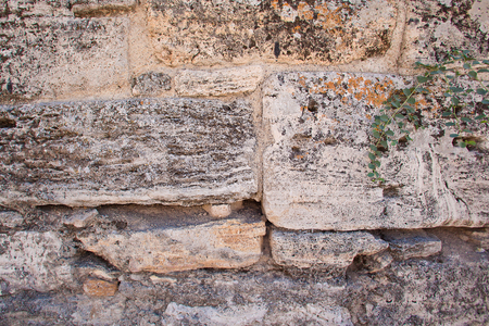 coquina: The texture of the stone wall. Limestone. Coquina. Background. Old walls. Stock Photo