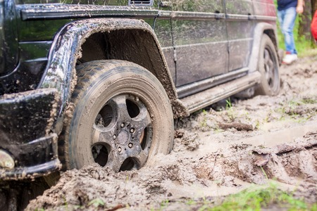 mud pit: SUV got stuck in the mud in the forest, off-road.