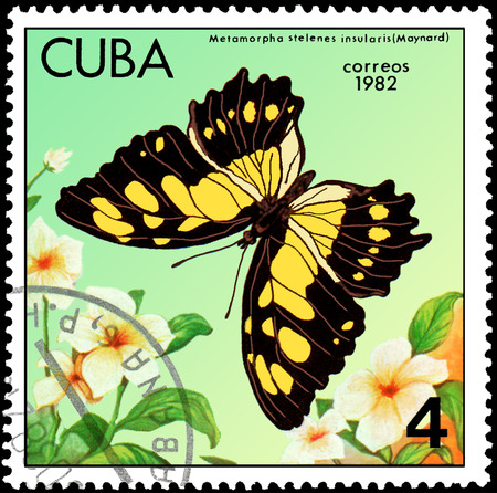 CUBA - CIRCA 1982: Postage stamp printed by Cuba shows butterfly Metamorpha stelenes insularis Editorial