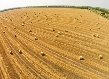 View from a birds eye view on a field with stacked bales of wheat