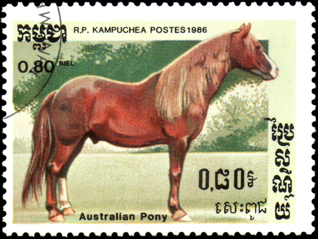 R.P. KAMPUCHEA - CIRCA 1986: A stamp printed in R.P. Kampuchea shows a Australian Pony, series breeds of horses