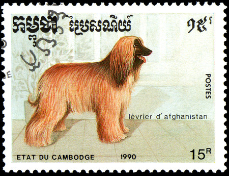 poststempel: CAMBODIA - CIRCA 1990: postage stamp, printed in Cambodia, shows a Afghan Hound