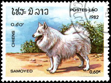 LAOS - CIRCA 1982: postage stamp, printed in Laos, shows a Samoyed Dog Editorial