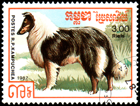 KAMPUCHEA - CIRCA 1987: postage stamp, printed in Kampuchea, shows a Rough Collie dog, series breeds dogs