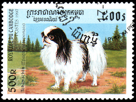 CAMBODIA - CIRCA 1997: postage stamp, printed in Cambodia, shows a Chin-chin Japanese Spaniel