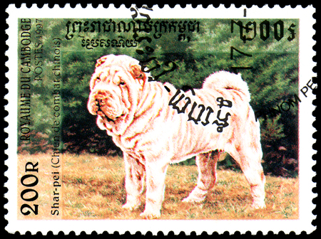 CAMBODIA - CIRCA 1997: postage stamp, printed in Cambodia, shows a Shar-pei Chinese fighting dog