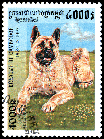 CAMBODIA - CIRCA 1997: a postage stamp, printed in Cambodia, shows a Akita Inu dog