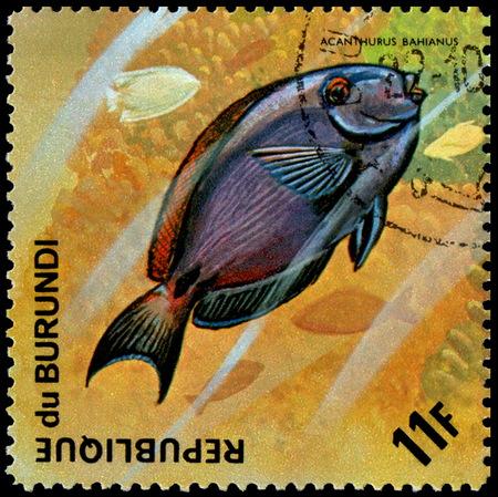 REPUBLIC OF BURUNDI - CIRCA 1974: postage stamp, printed in Burundi, shows a fish Ocean Surgeonfish (Acanthurus bahianus)