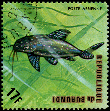 REPUBLIC OF BURUNDI - CIRCA 1974: postage stamp, printed in Burundi, shows a fish Angel Squeaker Synodontis angelicus Editorial