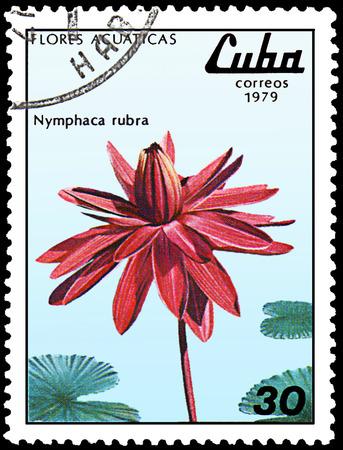 CUBA - CIRCA 1979: A stamp, printed in Cuba, shows a Nymphaea rubra, series water lilies