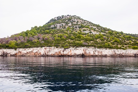 A large stone island in the sea with forest.
