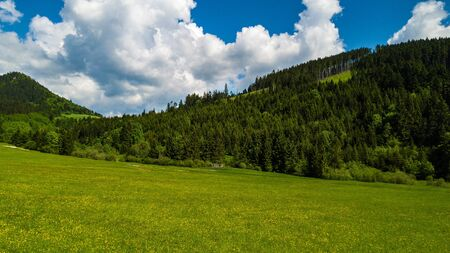 Aerial view of a green field in the Tatra Mountains in summer.