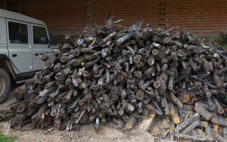 Image of overgrown wooden trunks prepared to burn and thus spend a warm winter in the typical town house.You can have a stove or a fireplace, the important thing is to be prepared for the hash winter.