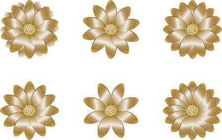 golden daisy: flores de oro de una margarita de Transvaal y manzanilla