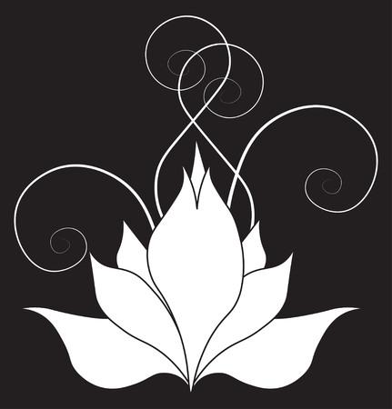 lilia: The stylized White Lilia on a black background