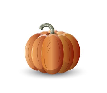 kitchen garden: orange pumpkin, autumn vegetable, round and beautiful