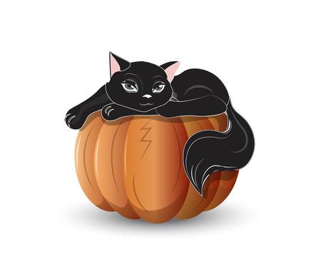 オレンジ色のカボチャに黒猫  イラスト・ベクター素材