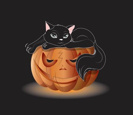 オレンジカボチャに黒猫、ハロウィンの写真