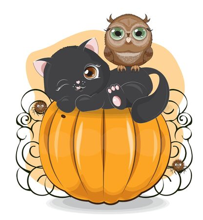 Halloween wink black cat. owl and spider on the pumpkin The picture in hand drawing cartoon style, can be used for t-shirt print, wear fashion design, greeting card,