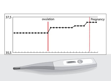 scheduleof basal temperature and its measurement . Baby and family planning.