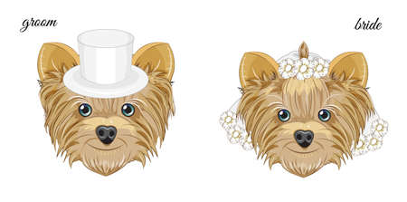 two vector puppys, Yorkshire terrier dogs, groom and bride. Picture in hand drawing cartoon style, for t-shirt wear fashion print design, greeting card, postcard. party invitation.