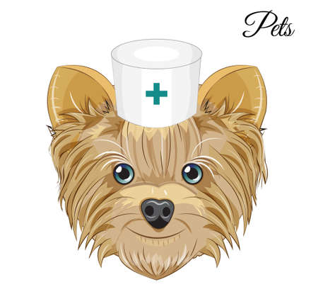 Lovely vector puppy, dog pets doctor. Picture in hand drawing cartoon style, for t-shirt wear fashion print design, greeting card, postcard. party invitation.