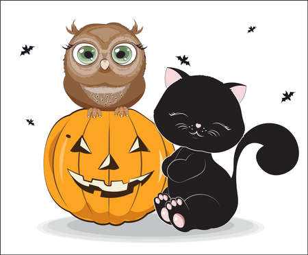 black Halloween baby cat and owl on pumpkin. Picture for t-shirt wear fashion print design, greeting card, postcard. baby shower. party invitation  イラスト・ベクター素材