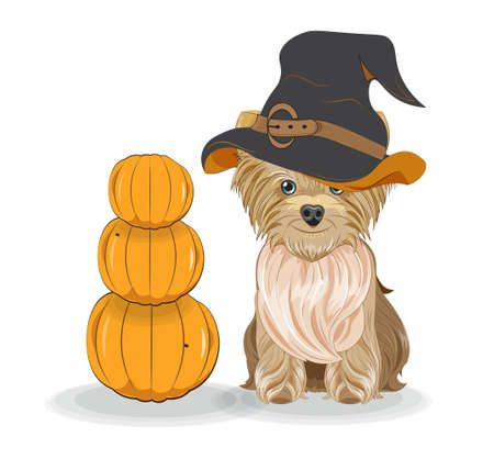 Lovely vector puppy, dog in Halloween hat and pumpkins. Picture in hand drawing cartoon style, for t-shirt wear fashion print design, holidaygreeting card, postcard. party invitation.