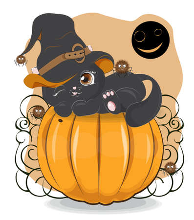 Halloween wink black cat in witch hat and spider on pumpkin, Picture in hand drawing cartoon style, for t-shirt wear fashion print design, greeting card, postcard. baby shower. party invitation.