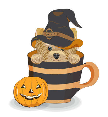 Lovely vector Halloween puppy, dog in witch hat, in cup near pumpkin. Picture in hand drawing cartoon style, for t-shirt wear fashion print design, greeting card, postcard. party invitation.