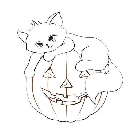 coloring book halloween cat, kitten on pumpkin. Picture in hand drawing cartoon style, for t-shirt wear fashion print design, greeting card, postcard. baby shower. party invitation.