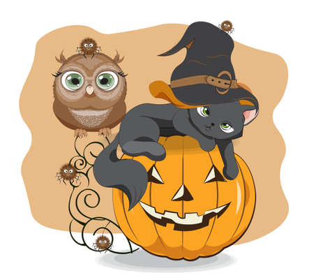 Halloween wink black cat in witch hat. owl and spider on pumpkin, Picture in hand drawing cartoon style, for t-shirt wear fashion print design, greeting card, postcard. baby shower. party invitation.