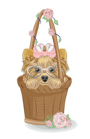 cute Yorkshire terrier dog, puppy on basket with flower roses, picture in hand drawing cartoon style for greeting card. postcard