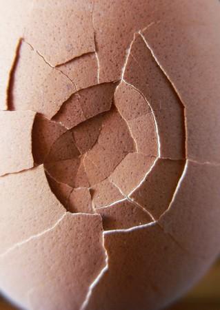 broken egg:  a broken egg close up