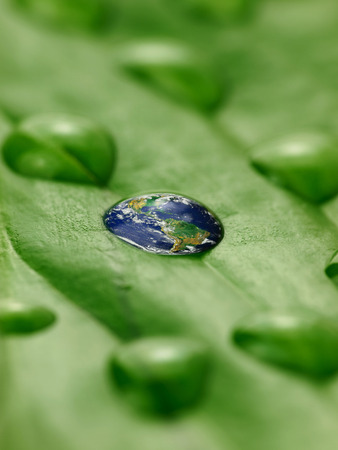 earth in water drops on a green leaf photo