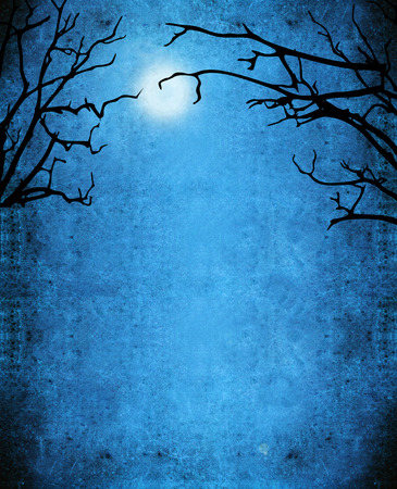 nocturne  background with trees and moon