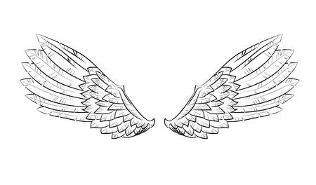 death angel: vector wings Illustration