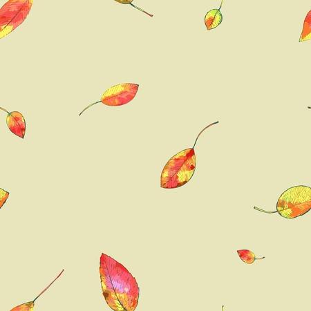 leaf background: autumn leaf background