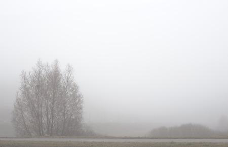 foggy weatrher